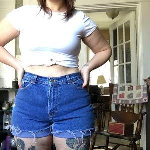 Vintage Style and Co. High Waist Shorts
